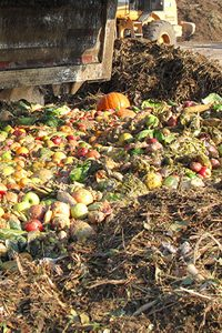 Harvest-Quest-food-waste